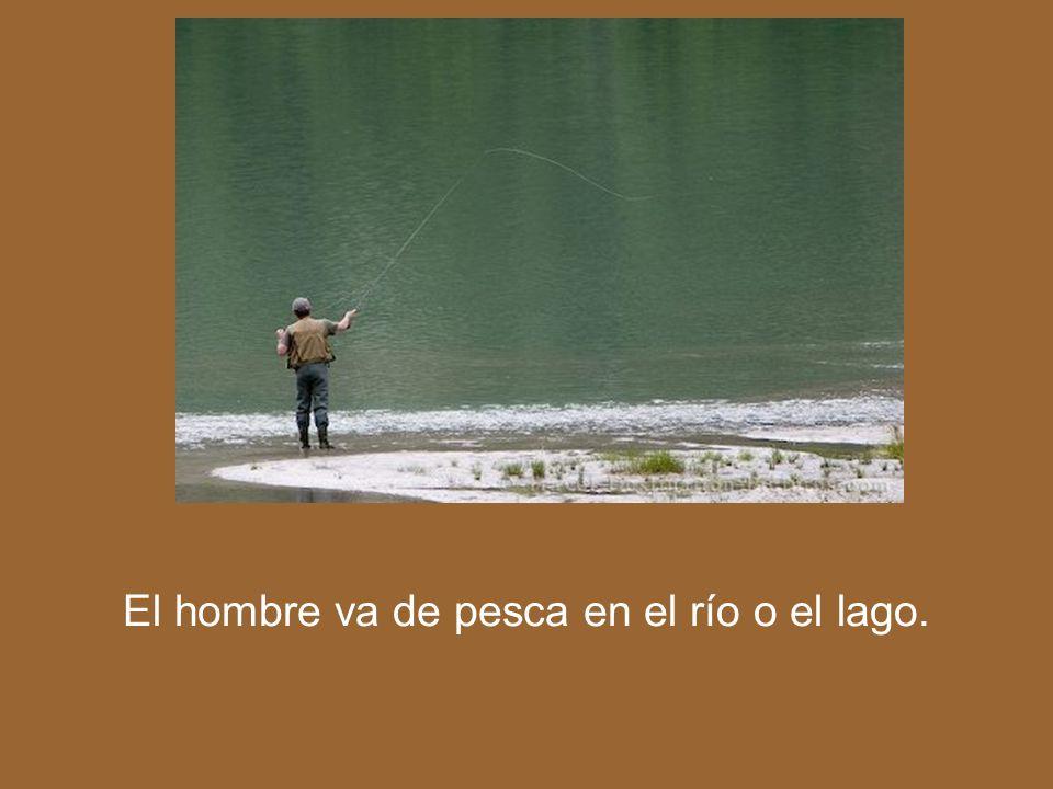 El hombre va de pesca en el río o el lago.