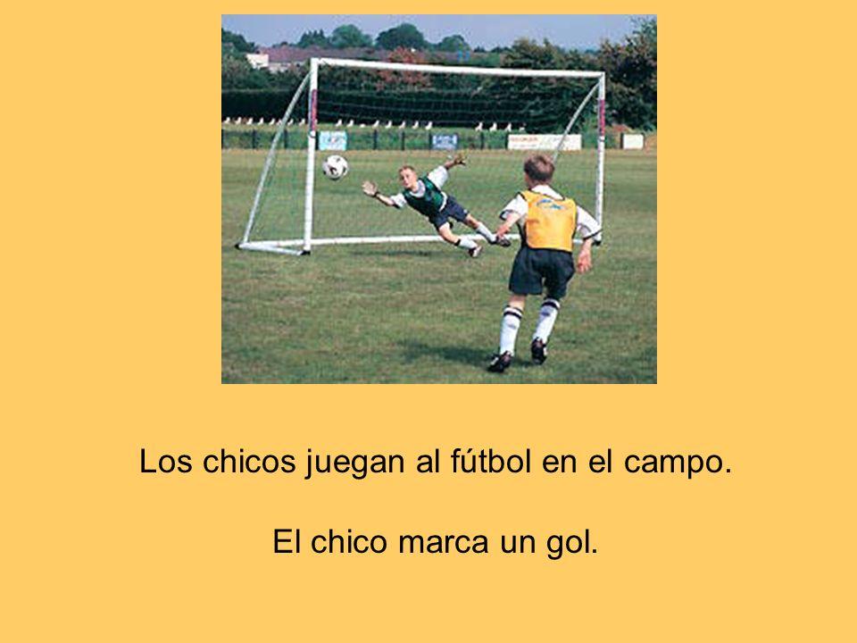 Los chicos juegan al fútbol en el campo. El chico marca un gol.