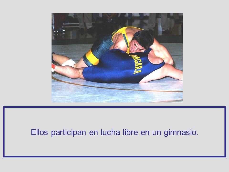 Ellos participan en lucha libre en un gimnasio.