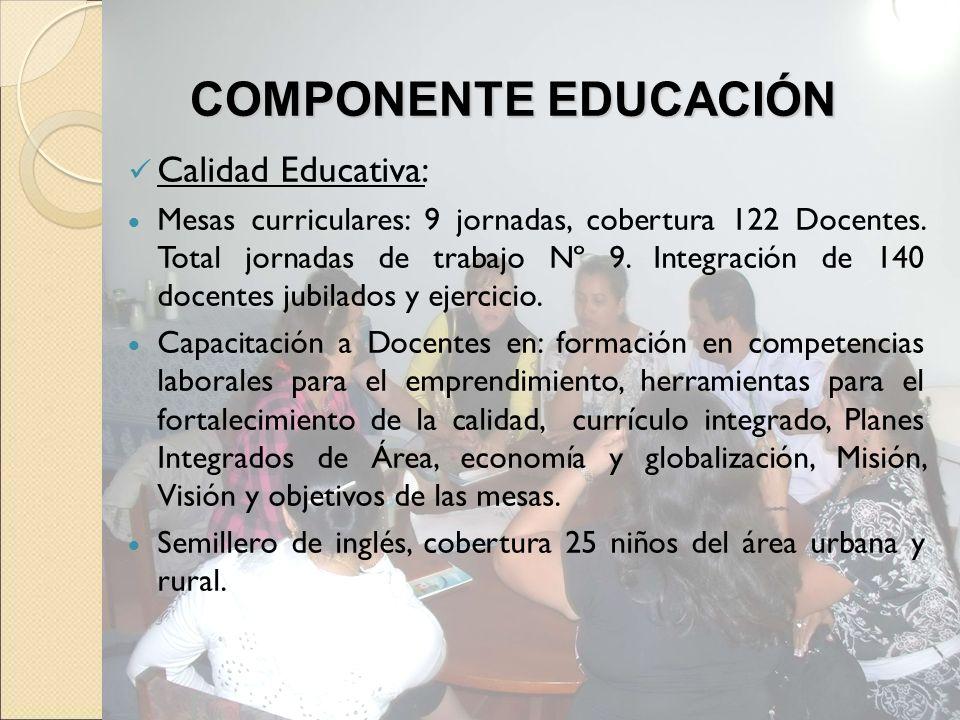 Calidad Educativa: Mesas curriculares: 9 jornadas, cobertura 122 Docentes. Total jornadas de trabajo Nº 9. Integración de 140 docentes jubilados y eje
