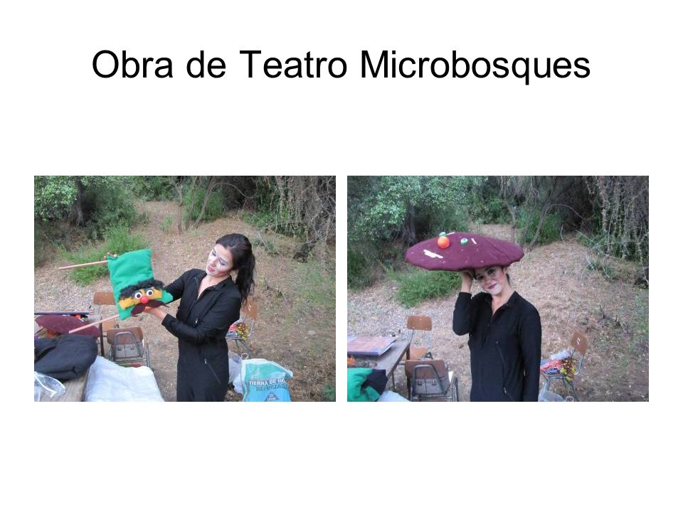 Obra de Teatro Microbosques