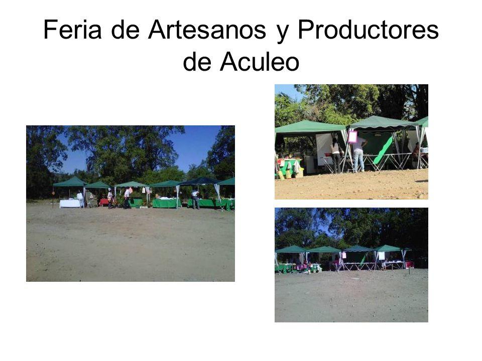 Feria de Artesanos y Productores de Aculeo