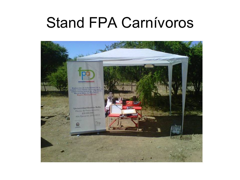 Stand FPA Carnívoros