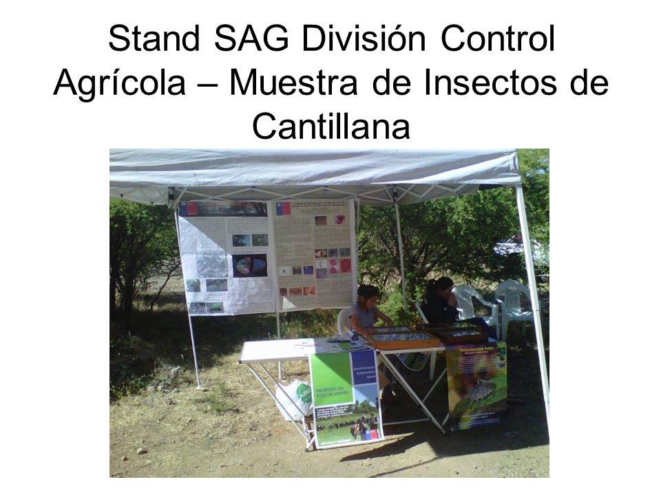 Stand SAG División Control Agrícola – Muestra de Insectos de Cantillana