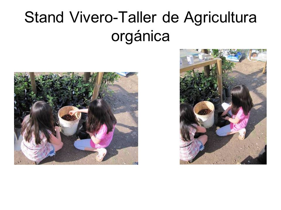 Stand Vivero-Taller de Agricultura orgánica