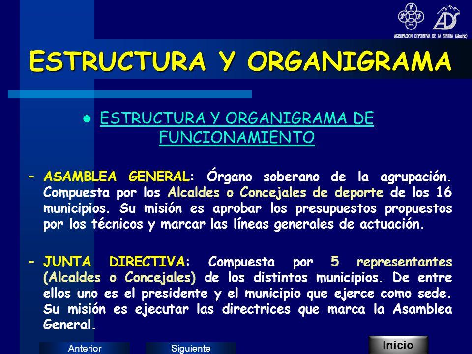 SiguienteAnterior ESTRUCTURA Y ORGANIGRAMA ESTRUCTURA Y ORGANIGRAMA DE FUNCIONAMIENTO –ASAMBLEA GENERAL: Órgano soberano de la agrupación.
