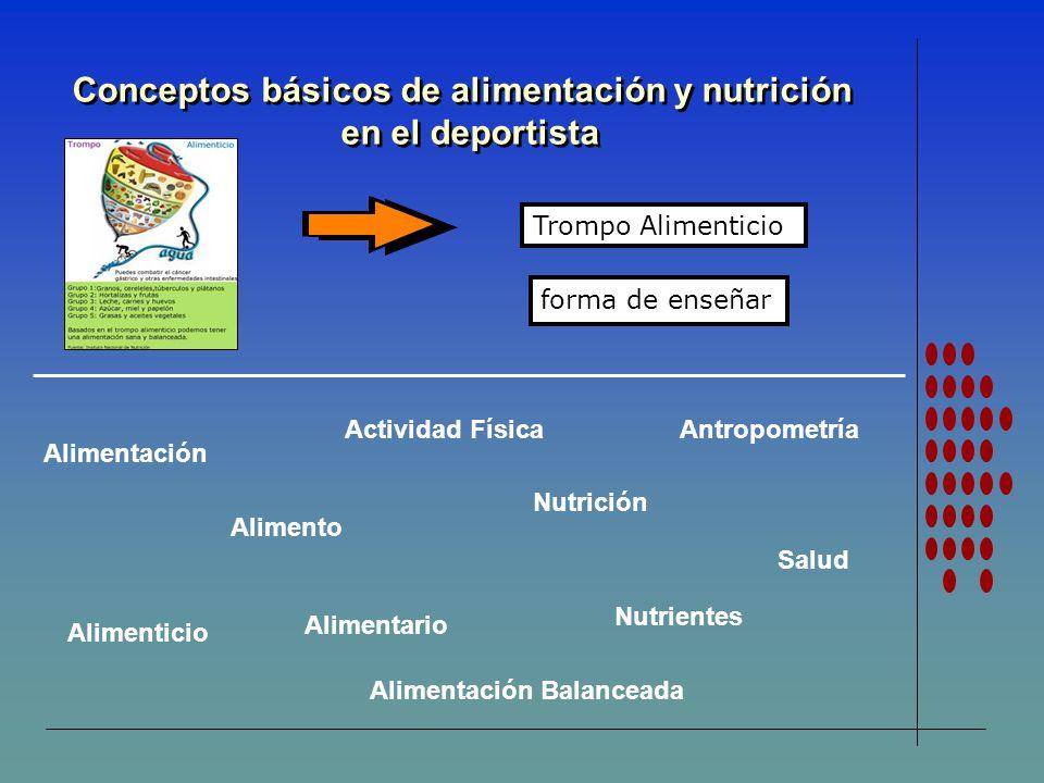 Conceptos básicos de alimentación y nutrición en el deportista Conceptos básicos de alimentación y nutrición en el deportista Trompo Alimenticio Nutri