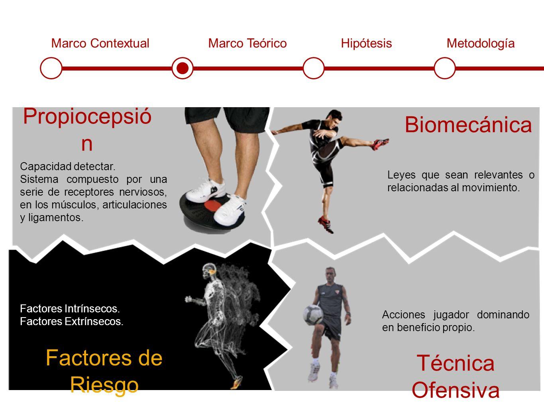 Marco ContextualMarco TeóricoHipótesisMetodología Propiocepsió n Biomecánica Técnica Ofensiva Factores de Riesgo Capacidad detectar.
