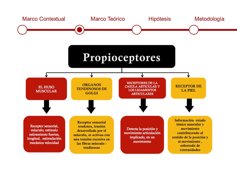 Marco ContextualMarco TeóricoHipótesisMetodología