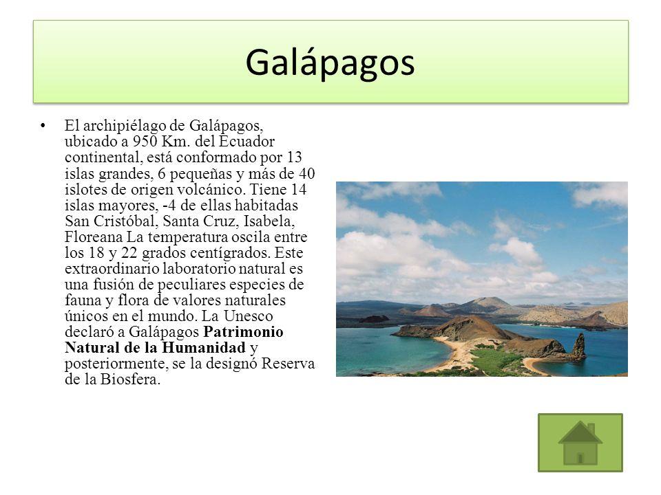 Galápagos El archipiélago de Galápagos, ubicado a 950 Km. del Ecuador continental, está conformado por 13 islas grandes, 6 pequeñas y más de 40 islote