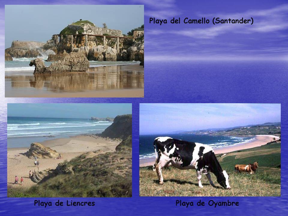 Playa de LiencresPlaya de Oyambre Playa del Camello (Santander)