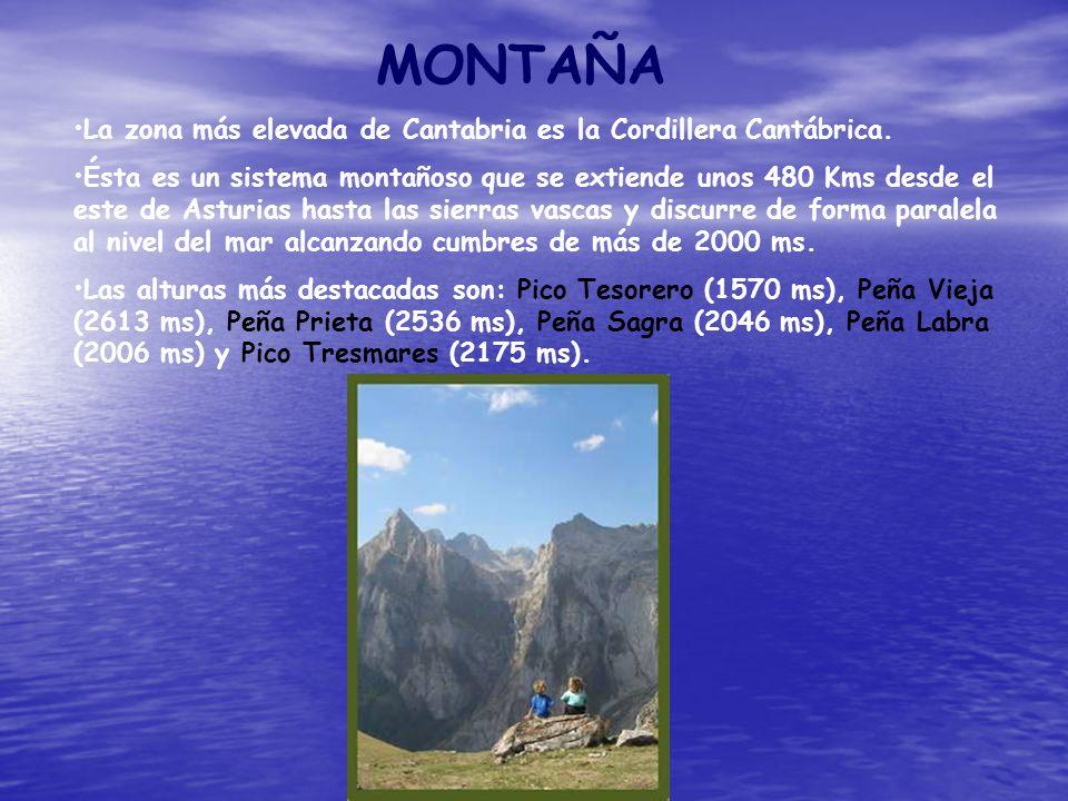 MONTAÑA La zona más elevada de Cantabria es la Cordillera Cantábrica. Ésta es un sistema montañoso que se extiende unos 480 Kms desde el este de Astur