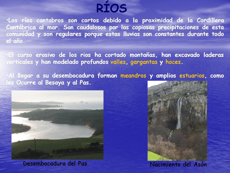 RÍOS Los ríos cantabros son cortos debido a la proximidad de la Cordillera Cantábrica al mar. Son caudalosos por las copiosas precipitaciones de esta