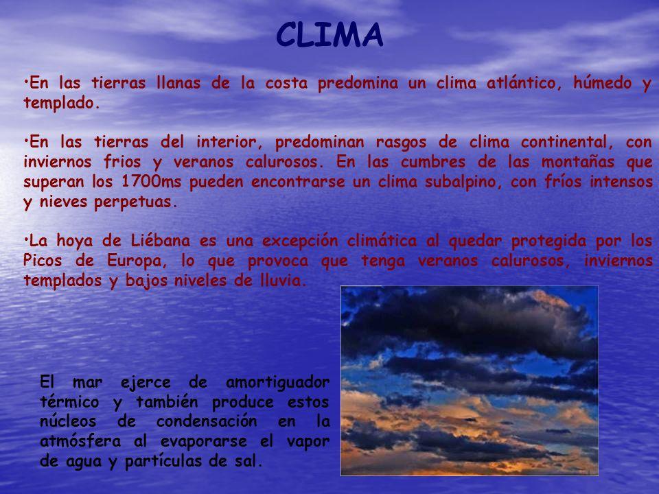 CLIMA En las tierras llanas de la costa predomina un clima atlántico, húmedo y templado. En las tierras del interior, predominan rasgos de clima conti