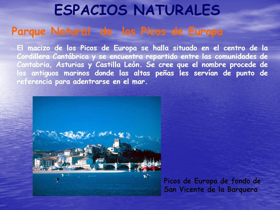 ESPACIOS NATURALES Parque Natural de los Picos de Europa El macizo de los Picos de Europa se halla situado en el centro de la Cordillera Cantábrica y