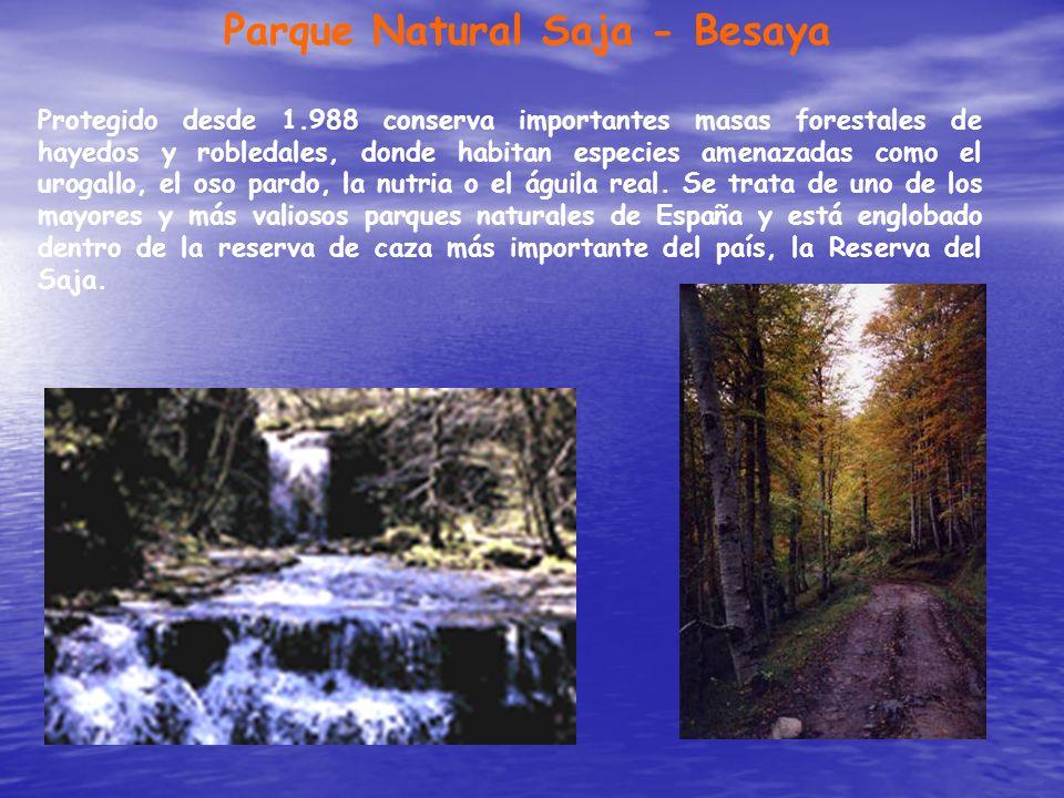 Parque Natural Saja - Besaya Protegido desde 1.988 conserva importantes masas forestales de hayedos y robledales, donde habitan especies amenazadas co