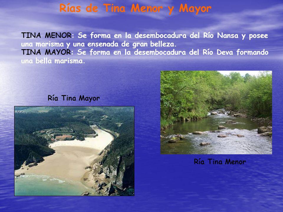Rías de Tina Menor y Mayor TINA MENOR: Se forma en la desembocadura del Río Nansa y posee una marisma y una ensenada de gran belleza. TINA MAYOR: Se f