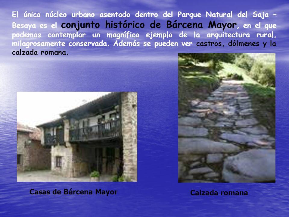 El único núcleo urbano asentado dentro del Parque Natural del Saja – Besaya es el conjunto histórico de Bárcena Mayor, en el que podemos contemplar un