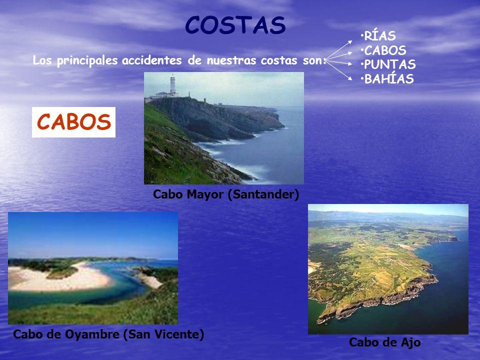 COSTAS Los principales accidentes de nuestras costas son: RÍAS CABOS PUNTAS BAHÍAS CABOS Cabo de Oyambre (San Vicente) Cabo de Ajo Cabo Mayor (Santand