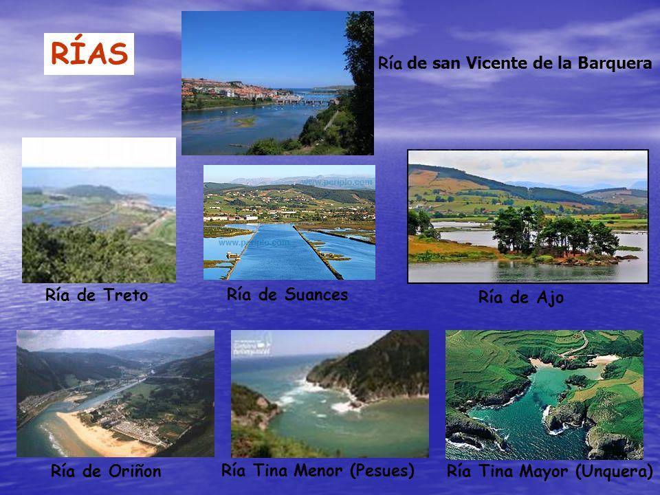 RÍAS Ría de Oriñon Ría Tina Menor (Pesues) Ría Tina Mayor (Unquera) Ría de Treto Ría de Suances Ría de Ajo Ría de san Vicente de la Barquera