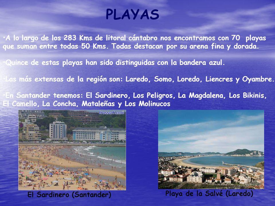 PLAYAS A lo largo de los 283 Kms de litoral cántabro nos encontramos con 70 playas que suman entre todas 50 Kms. Todas destacan por su arena fina y do