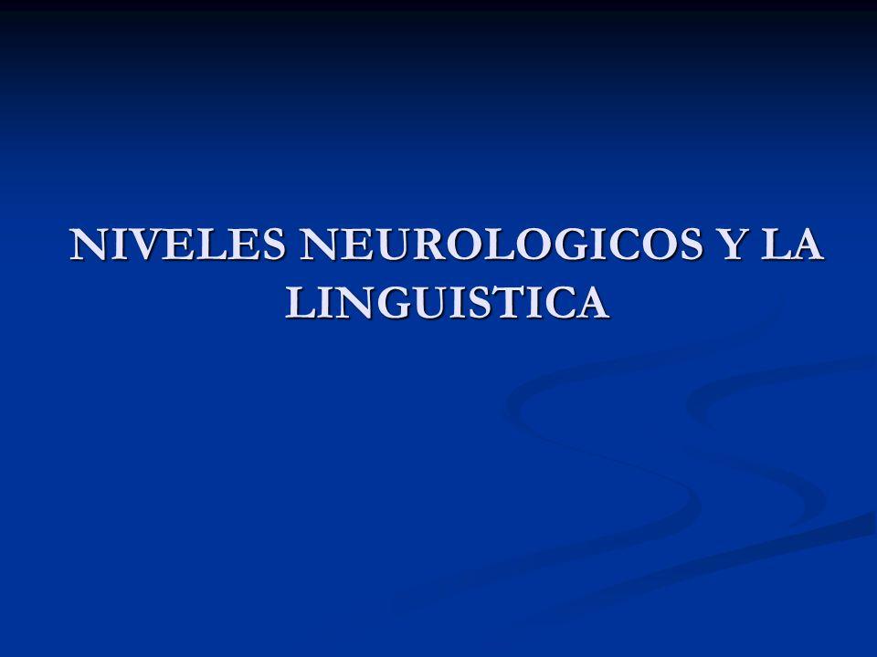 NIVELES NEUROLOGICOS