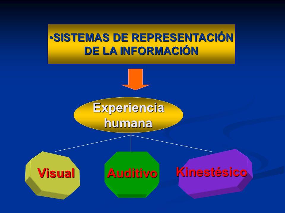 Sistemas Representacionales REPRESENTAN Nuestra Realidad personal