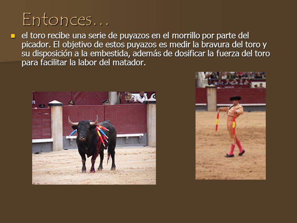 Una corrida de toros se divide en tres partes Al principio, un picador, montado a caballo armado, entra la plaza de toros y utiliza una vara larga con