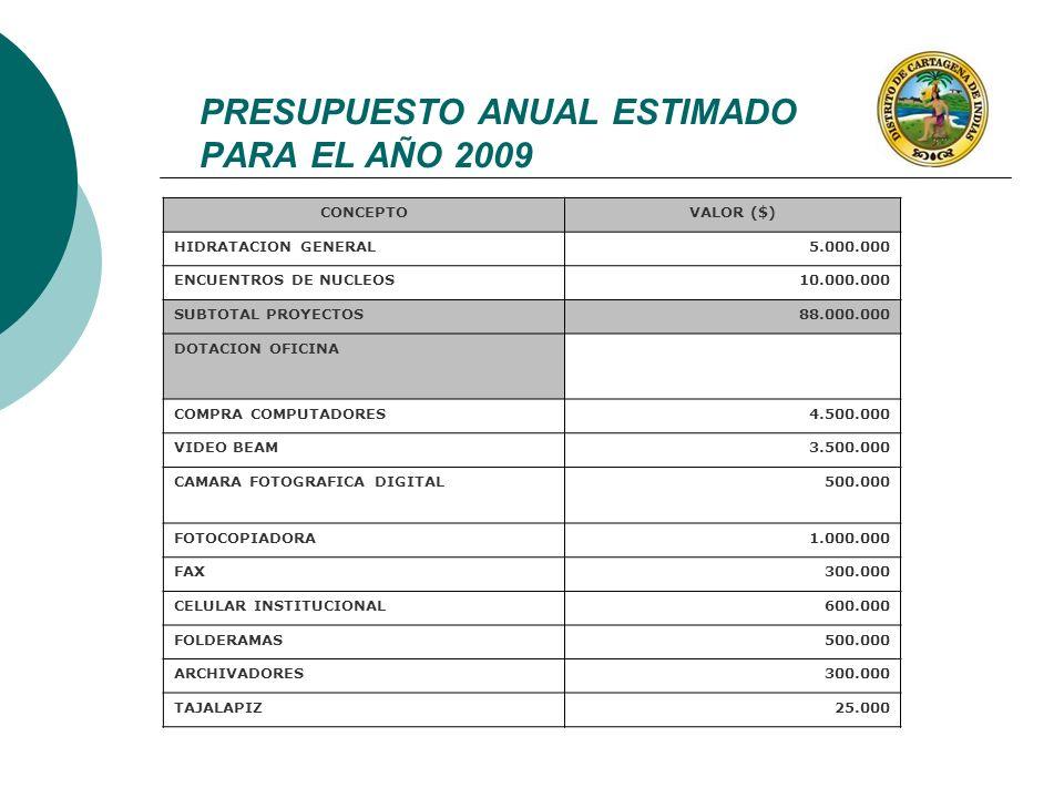CONCEPTOVALOR ($) HIDRATACION GENERAL5.000.000 ENCUENTROS DE NUCLEOS10.000.000 SUBTOTAL PROYECTOS88.000.000 DOTACION OFICINA COMPRA COMPUTADORES4.500.