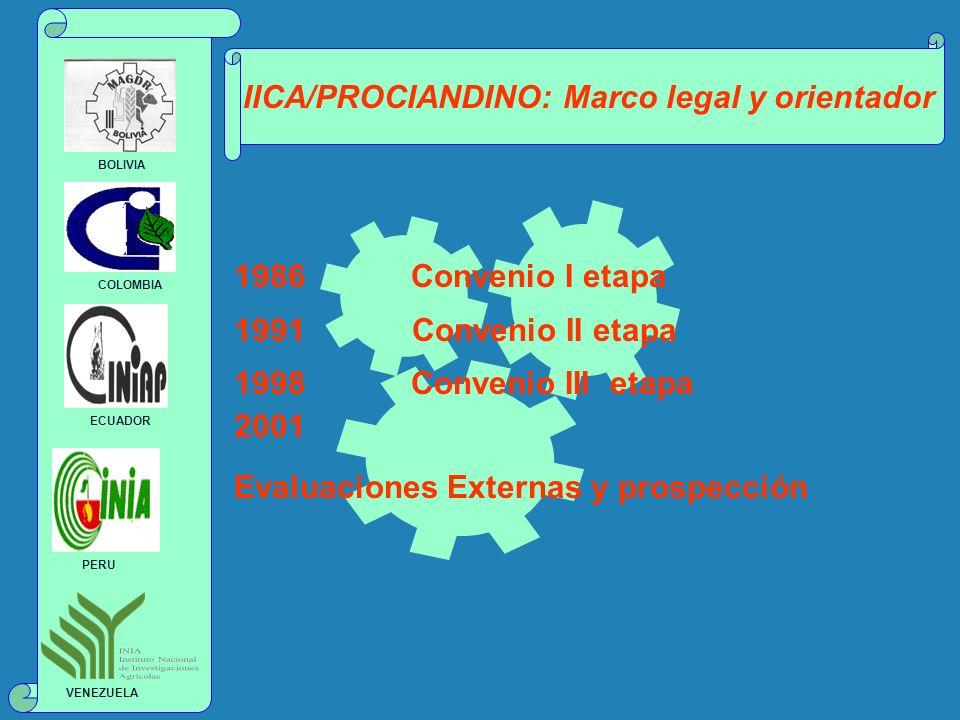 IICA/PROCIANDINO: Marco legal y orientador 1986 Convenio I etapa 1991 Convenio II etapa 1998 Convenio III etapa 2001 Evaluaciones Externas y prospecci