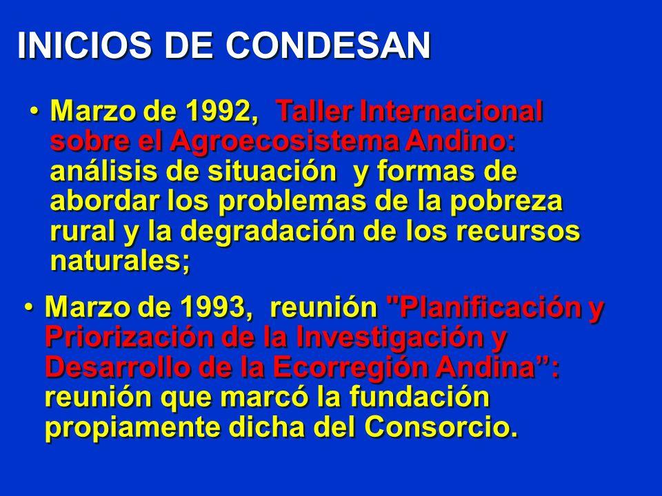 INICIOS DE CONDESAN Marzo de 1992, Taller Internacional sobre el Agroecosistema Andino: análisis de situación y formas de abordar los problemas de la