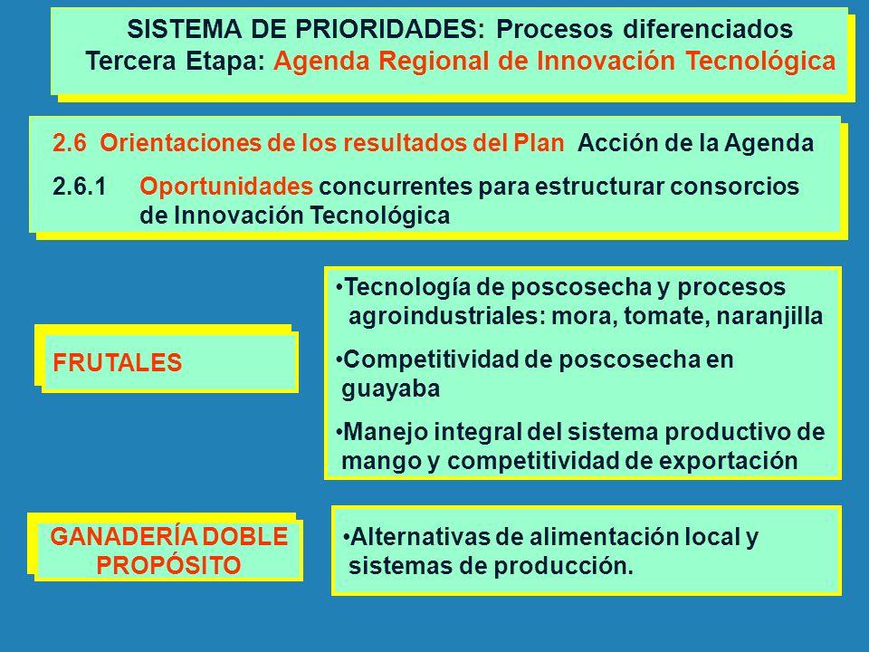2.6 Orientaciones de los resultados del Plan Acción de la Agenda 2.6.1Oportunidades concurrentes para estructurar consorcios de Innovación Tecnológica