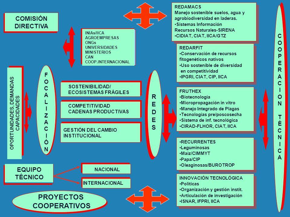 COOPERACIONTÉCNICACOOPERACIONTÉCNICA INIAs/IICA AGROEMPRESAS ONGs UNIVERSIDADES MINISTERIOS CAN COOP.INTERNACIONAL SOSTENIBILIDAD/ ECOSISTEMAS FRÁGILE