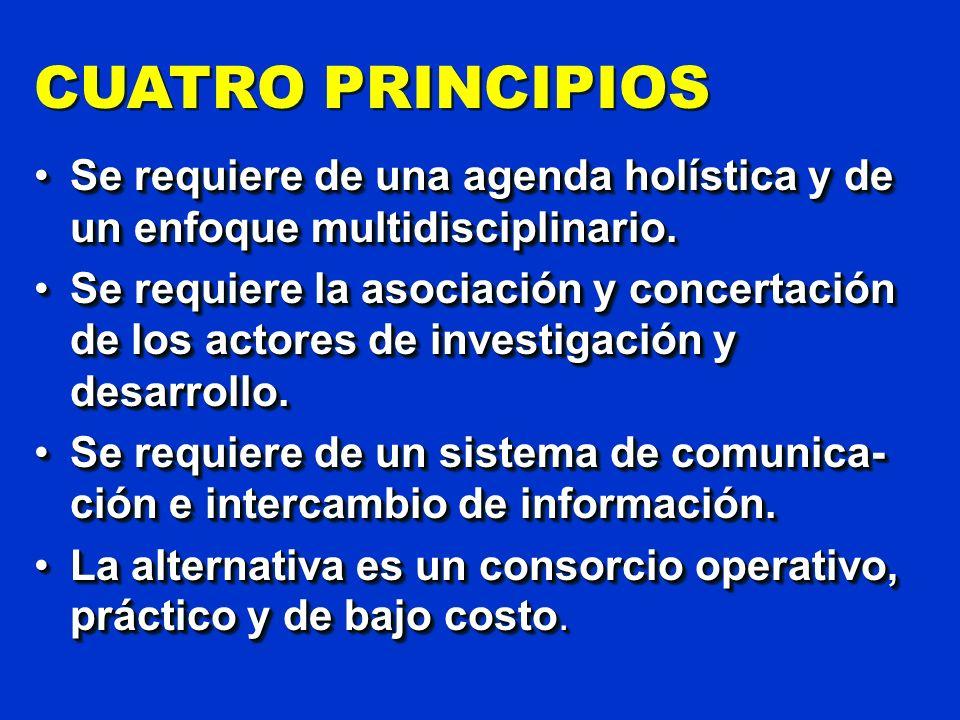CUATRO PRINCIPIOS Se requiere de una agenda holística y de un enfoque multidisciplinario.Se requiere de una agenda holística y de un enfoque multidisc
