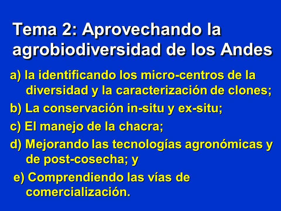 Tema 2: Aprovechando la agrobiodiversidad de los Andes a) la identificando los micro-centros de la diversidad y la caracterización de clones; b) La co