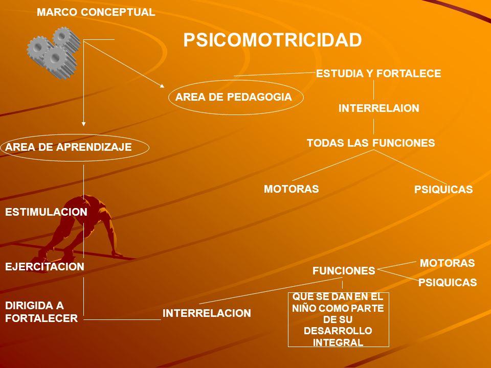 PSICOMOTRICIDAD MARCO CONCEPTUAL AREA DE APRENDIZAJE ESTIMULACION EJERCITACION DIRIGIDA A FORTALECER INTERRELACION FUNCIONES QUE SE DAN EN EL NIÑO COM