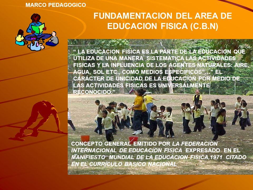 FUNDAMENTACION DEL AREA DE EDUCACION FISICA (C.B.N) LA EDUCACION FISICA ES LA PARTE DE LA EDUCACION QUE UTILIZA DE UNA MANERA SISTEMATICA LAS ACTIVIDA