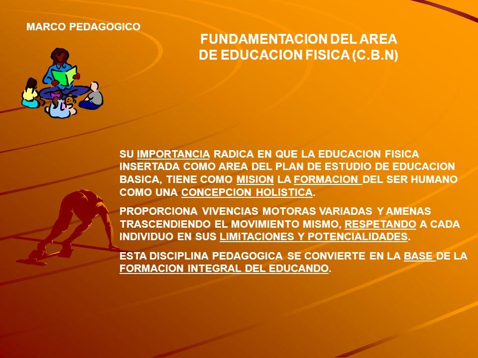 FUNDAMENTACION DEL AREA DE EDUCACION FISICA (C.B.N) MARCO PEDAGOGICO SU IMPORTANCIA RADICA EN QUE LA EDUCACION FISICA INSERTADA COMO AREA DEL PLAN DE