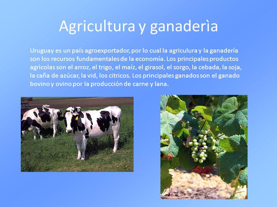 Agricultura y ganaderìa Uruguay es un país agroexportador, por lo cual la agriculura y la ganadería son los recursos fundamentales de la economía. Los