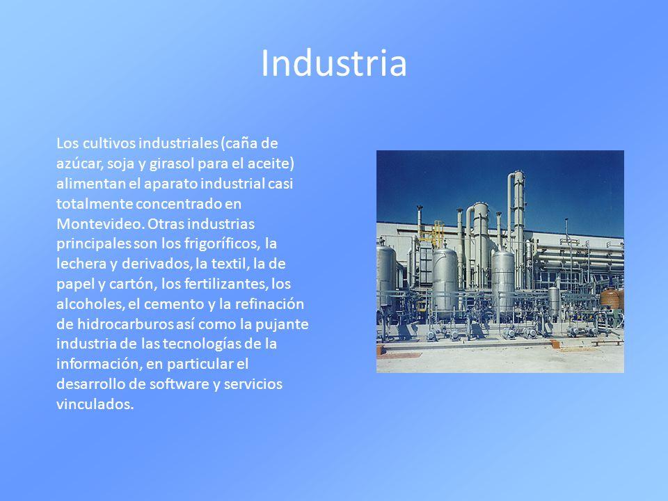 Industria Los cultivos industriales (caña de azúcar, soja y girasol para el aceite) alimentan el aparato industrial casi totalmente concentrado en Mon