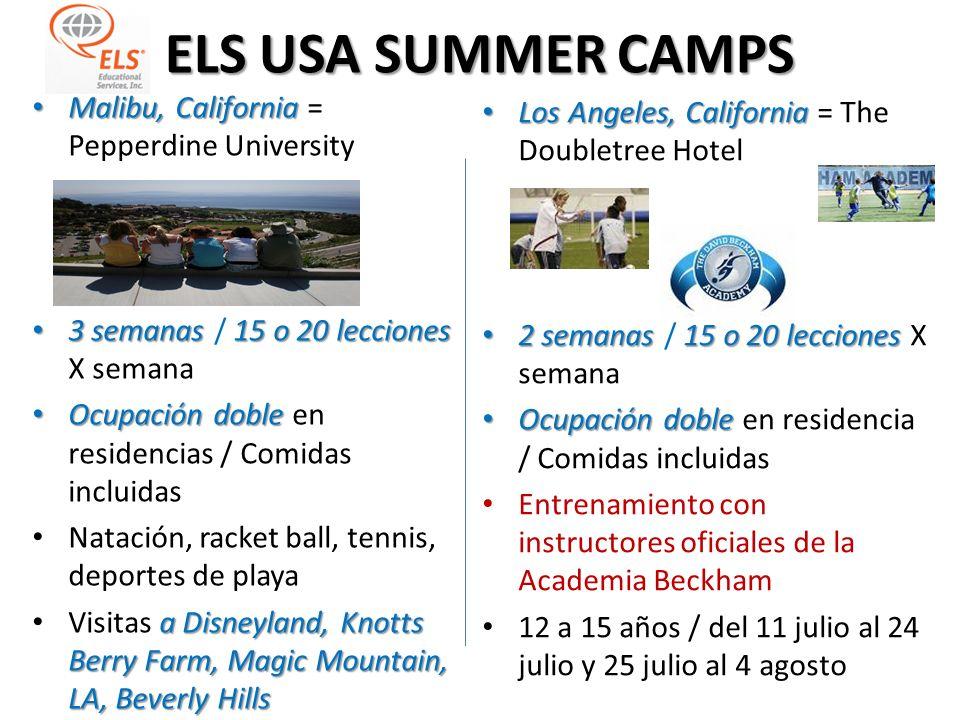 ELS USA SUMMER CAMPS St. Petersburg, Florida St. Petersburg, Florida = Eckerd College 4 semanas 15 lecciones 4 semanas (3 opc) / 15 lecciones Ocupació