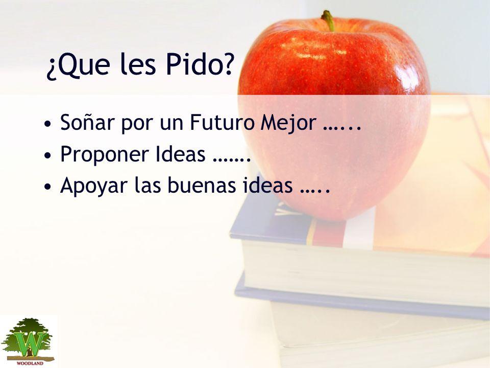 ¿Que les Pido? Soñar por un Futuro Mejor …... Proponer Ideas ……. Apoyar las buenas ideas …..