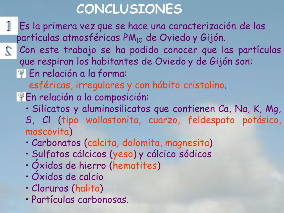 Con este trabajo se ha podido conocer que las partículas que respiran los habitantes de Oviedo y de Gijón son: CONCLUSIONES Es la primera vez que se h