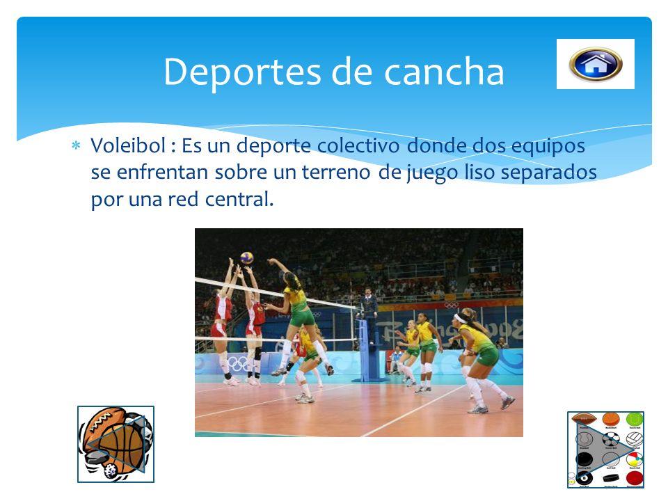 Baloncesto: Es un deporte colectivo de equipo en el que dos conjuntos de cinco jugadores cada uno, intentan anotar canastas o dobles y/o triples intro