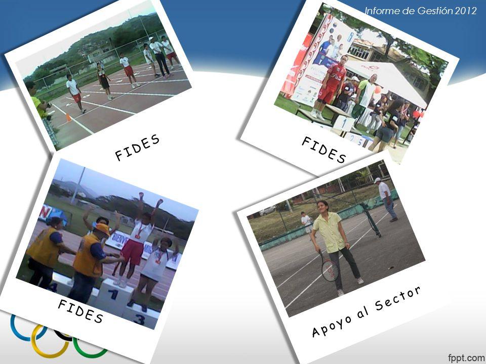 Informe de Gestión 2012 FIDES Apoyo al Sector