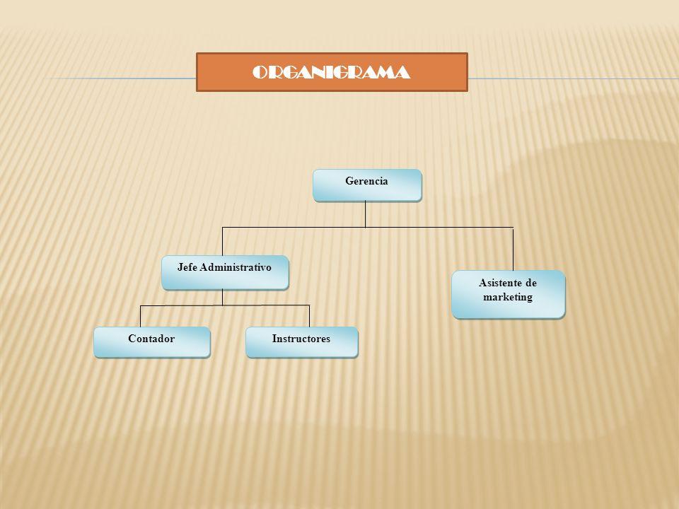 ORGANIGRAMA Gerencia Jefe Administrativo Asistente de marketing Contador Instructores