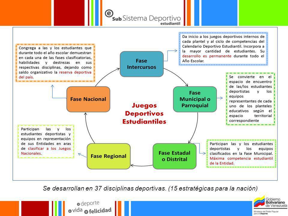Se desarrollan en 37 disciplinas deportivas. (15 estratégicas para la nación)