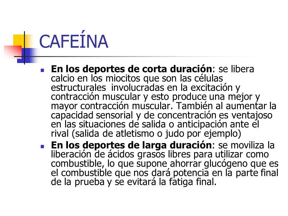 CAFEÍNA En los deportes de corta duración: se libera calcio en los miocitos que son las células estructurales involucradas en la excitación y contracc