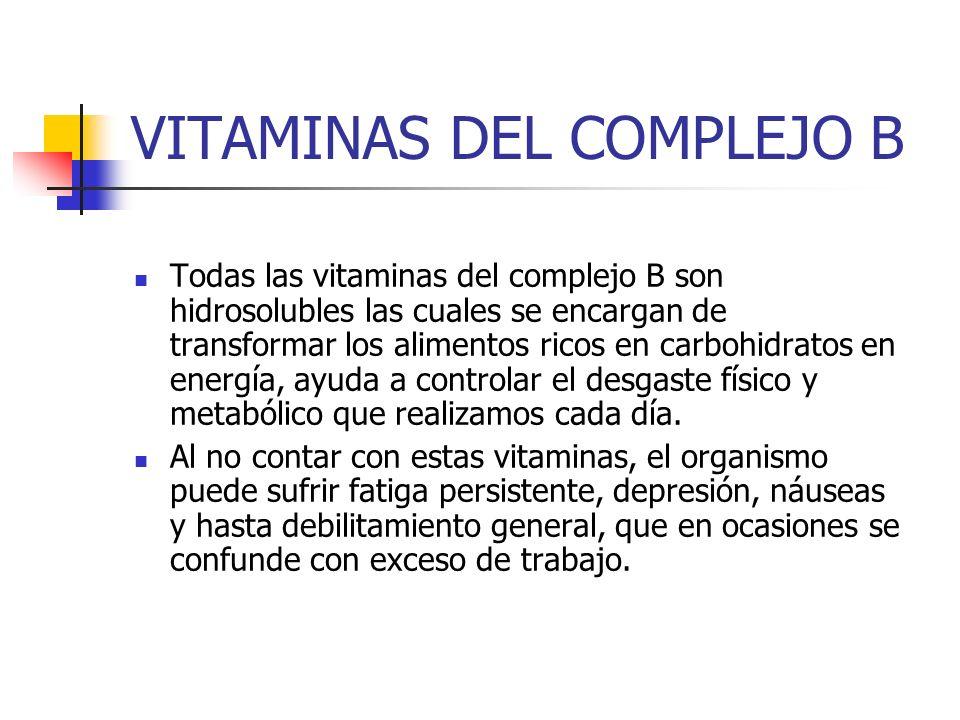 VITAMINAS DEL COMPLEJO B Todas las vitaminas del complejo B son hidrosolubles las cuales se encargan de transformar los alimentos ricos en carbohidrat