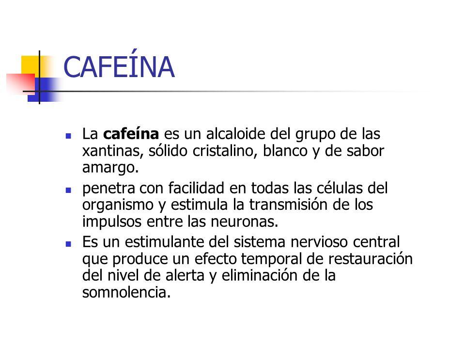CAFEÍNA La cafeína es un alcaloide del grupo de las xantinas, sólido cristalino, blanco y de sabor amargo. penetra con facilidad en todas las células